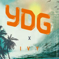 YDG Series Vol.2 Jump Down