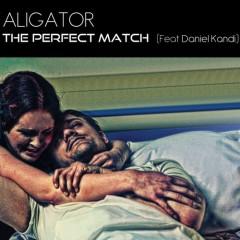 The Perfect Match - Daniel Kandi