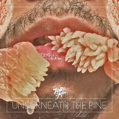 Underneath The Pine - Toro y Moi