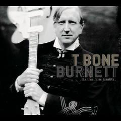 The True False Identity - T-Bone Burnett