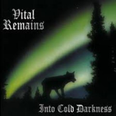 Into Cold Darkness - Vital Remains