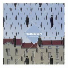 Liverpool Rain - Racoon