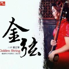 Zhong Guo Xian Dai Erhu - Huang Jiang Qin
