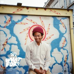 What For? - Toro y Moi