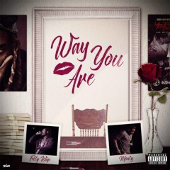 Way You Are (Single)
