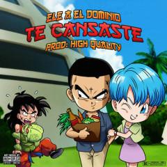Te Cansaste (Single)