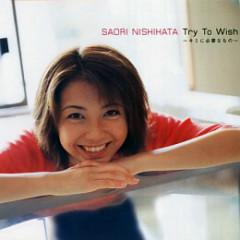 Try to Wish ~Kimi ni Hitsuyou na Mono~
