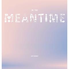 In The Meantime - Jeff Bernat