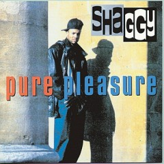 Pure Pleasure - Shaggy