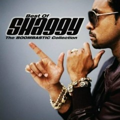 Best Of Shaggy: The Boombastic Collection