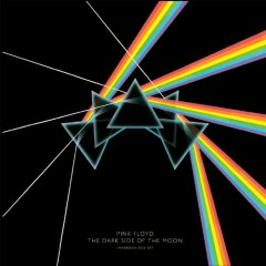 The Dark Side Of The Moon (Immersion Box Set) (CD2) - Pink Floyd