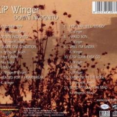 Down Incognito Unplugged