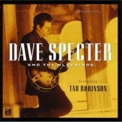 Blueplicity - Dave Specter