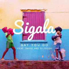 Say You Do - Sigala,Imani,Dj Fresh
