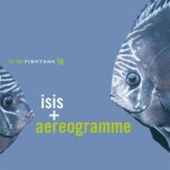In The Fishtank, Vol.14 - Isis
