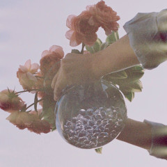 The Flower In The Bottle (Single) - Conan Rocoberry