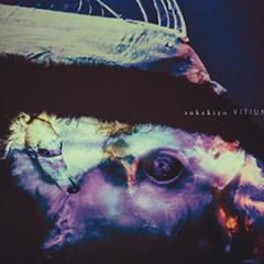 VITIUM (Deluxe Edition) CD2 - sukekiyo