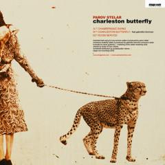 Charleston Butterfly