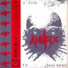 Live In Slovenia - Amebix