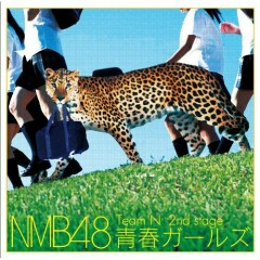 Team N 2nd Stage Seishun Girls