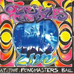 Live At The Pongmasters Ball (CD2) - Ozric Tentacles