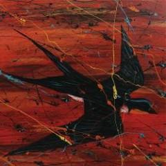 Barnswallow - Charlie Parr