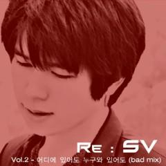 Re SV Vol.9