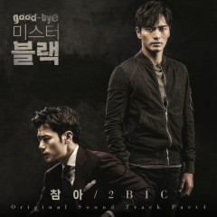 Goodbye Mr. Black OST Part.4  - 2Bic