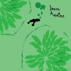 Danse Manatee - Animal Collective