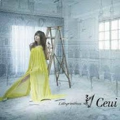 Compilation Songs - Ceui