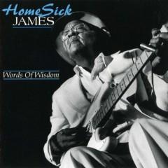 Words Of Wisdom - Homesick James