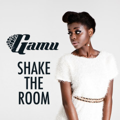 Shake The Room (Remixes) - EP - Gamu