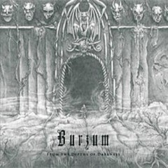 From The Depths OF Darkness - Burzum