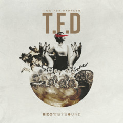 T.F.D (Prod. By 87sound) - Rico