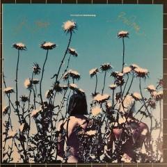 Boomerang - Siouxsie And The Banshees