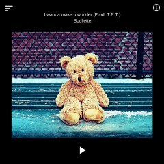 I Wanna Make U Wonder (Single)