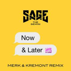 Now And Later (Merk & Kremont Remix) (Single)
