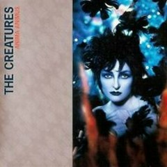 Anima Animus (Promo) - Siouxsie And The Banshees