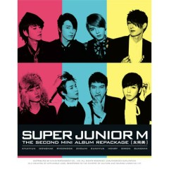 Perfection (Version B)  - Super Junior M
