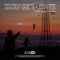 What We Started (Single) - Don Diablo,Steve Aoki,Lush & Simon,BullySongs