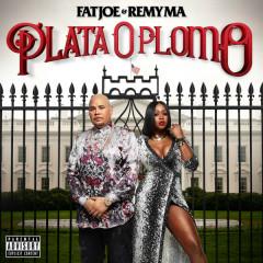 Plata O Plomo - Fat Joe, Remy Ma