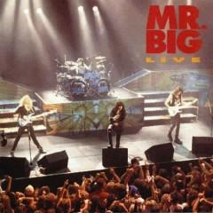 Mr. Big Live - Mr. Big