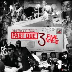 Past Due 3 (CD1)