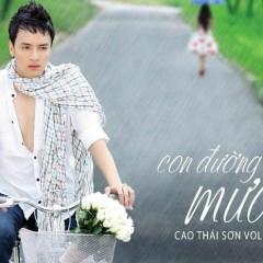 Con Đường Mưa - Cao Thái Sơn