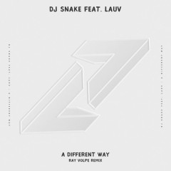 A Different Way (Ray Volpe Remix)