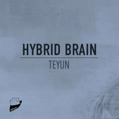 Hybrid Brain
