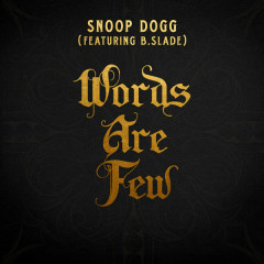Words Are Few (Single)