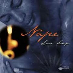 Love Songs - Najee