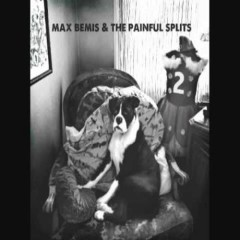 Max Bemis And The Painful Splits (Part2) - Max Bemis