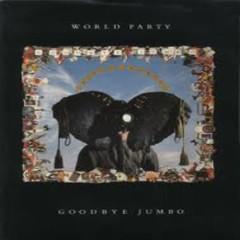 Goodbye Jumbo